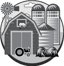 The Local Farm Market